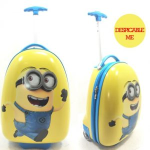 Cushion & Luggage Bags